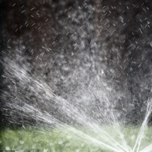 Your 7-Step DIY Sprinkler Tune-Up Checklist and When You Can Water in DFW
